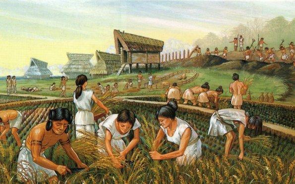 As mulheres no Agro