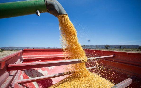Ipea prevê menor crescimento do agronegócio em 2021