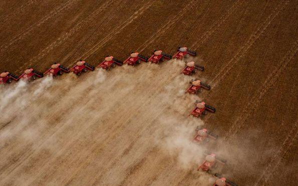 IBGE prevê safra recorde de 264,9 milhões de toneladas para 2021