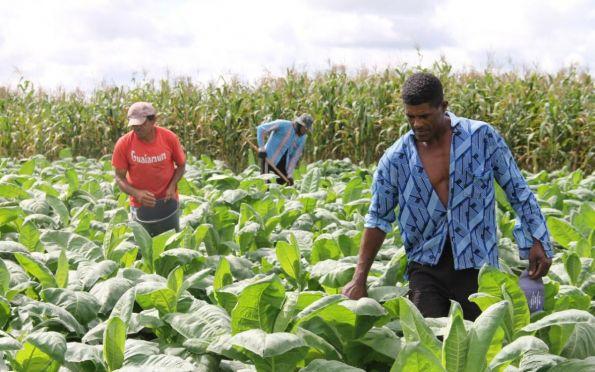 Sergipe contará com novo equipamento para análises de níveis de agrotóxicos
