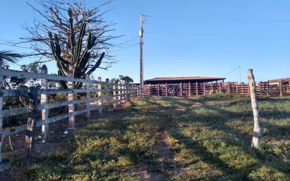 Consumidores beneficiados pela tarifa rural devem atualizar cadastro