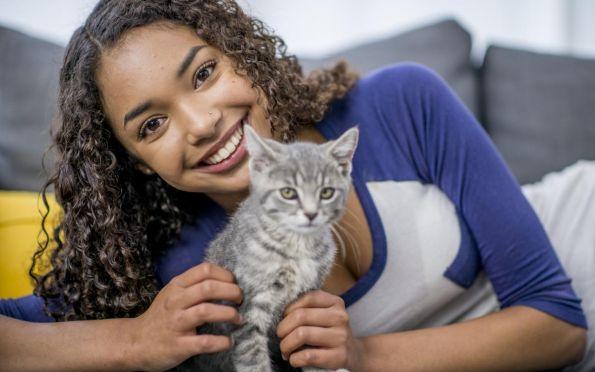 ONG Anjos realiza adoção responsável de cães e gatos no  RioMar Aracaju